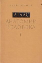 Атлас анатомии человека I II III том