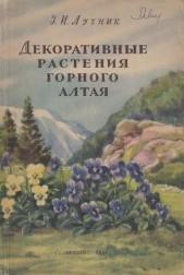 Декоративные растения горного Алтая