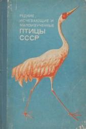 Редкие и исчезающие и малоизученные птицы СССР
