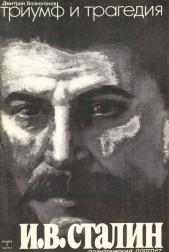 Триумф и трагедия. Политический портрет И.В.Сталина. Книга I. Часть 1 и 2