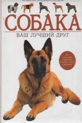 Альбом- энциклопедия: Собака. Ваш лучший друг